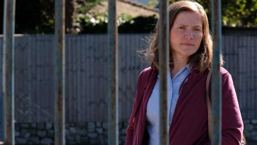 The Fight Dvd Review Dir Jessica Hynes 2019 Critical Popcorn