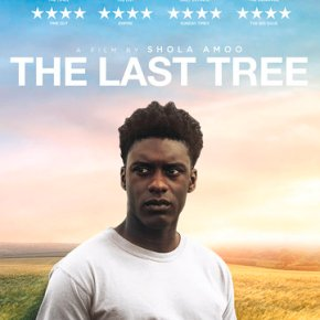 Win The Last Tree on DVD!